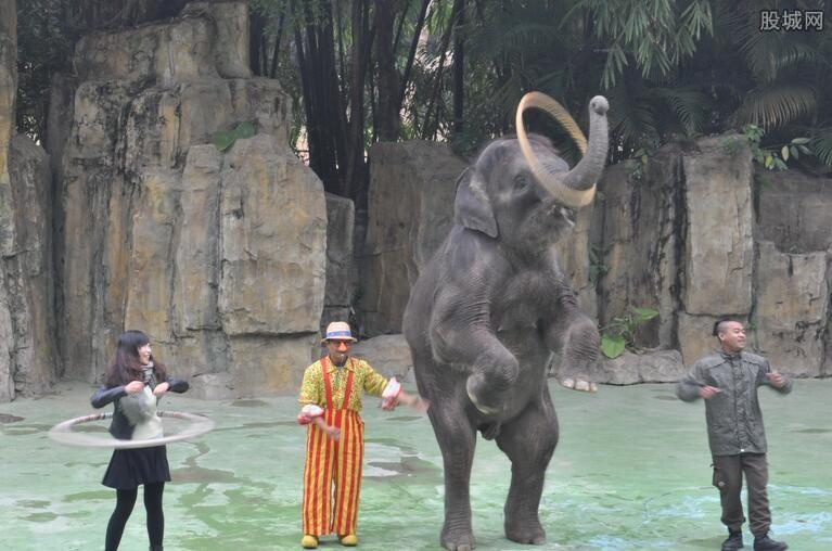 广州动物园好玩吗