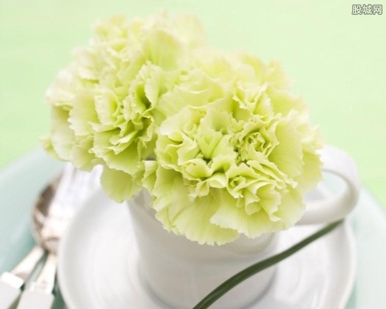 鲜花为什么那么贵
