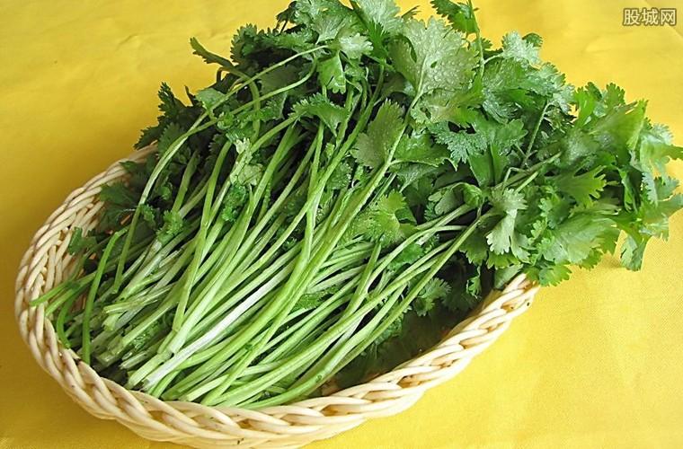香菜多少钱一斤
