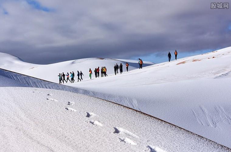 撒哈拉沙漠下雪啦