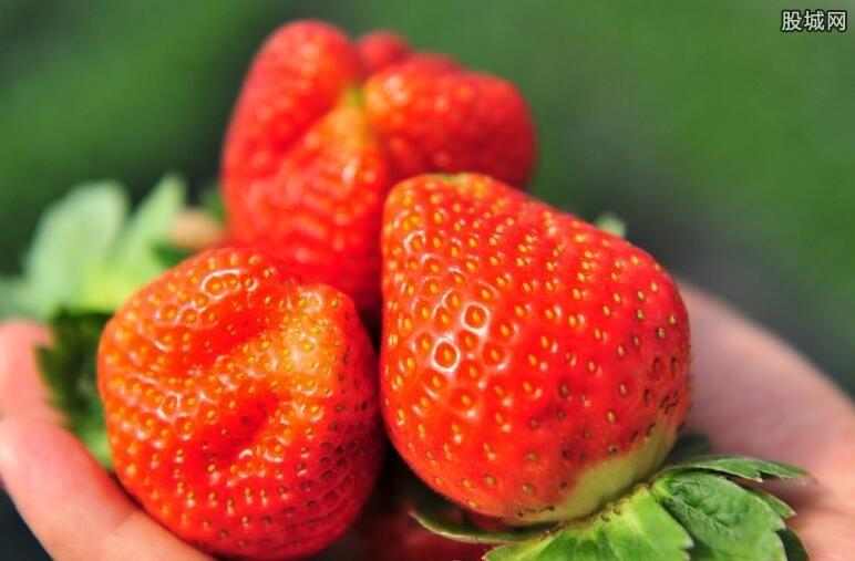 偷草莓被罚八千元