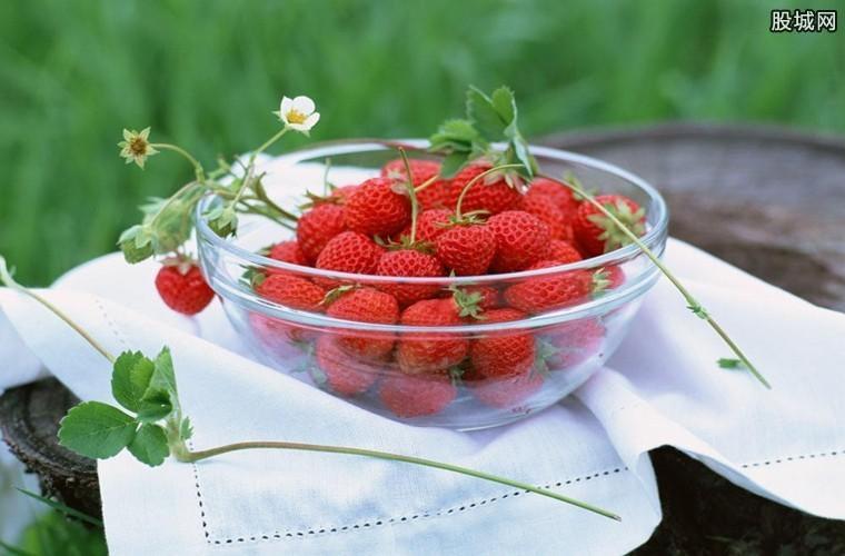 草莓成为最脏的水果还能吃吗