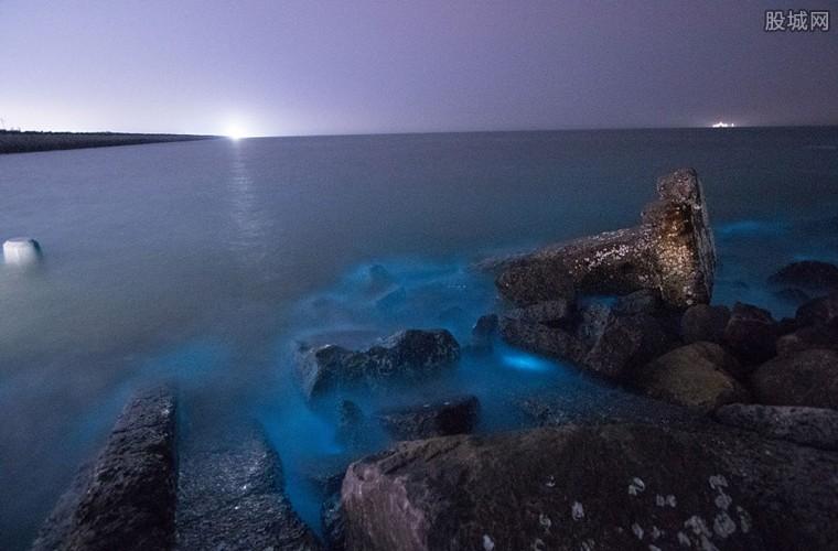 山东东营孤东海堤现荧光海滩 孤东海堤最佳旅游攻略