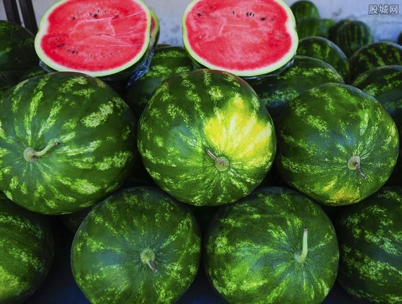 吃西瓜会感染病毒是谣言