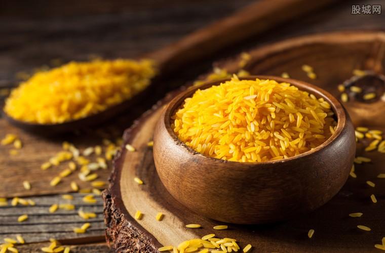 黄金大米在美上市时间