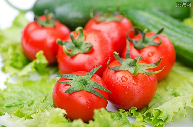 西红柿价格卖4元一斤