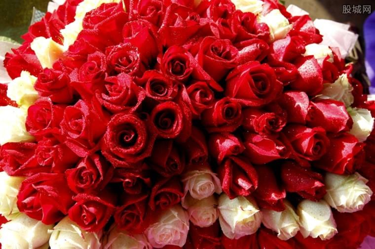 情人节玫瑰花价格