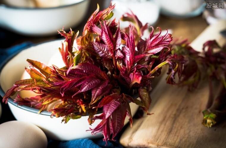 香椿野菜卖上百元一斤