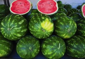 西瓜涨价30% 西瓜涨价的原因是什么