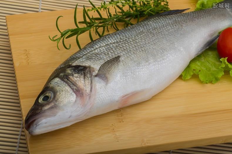 鲈鱼价格上涨