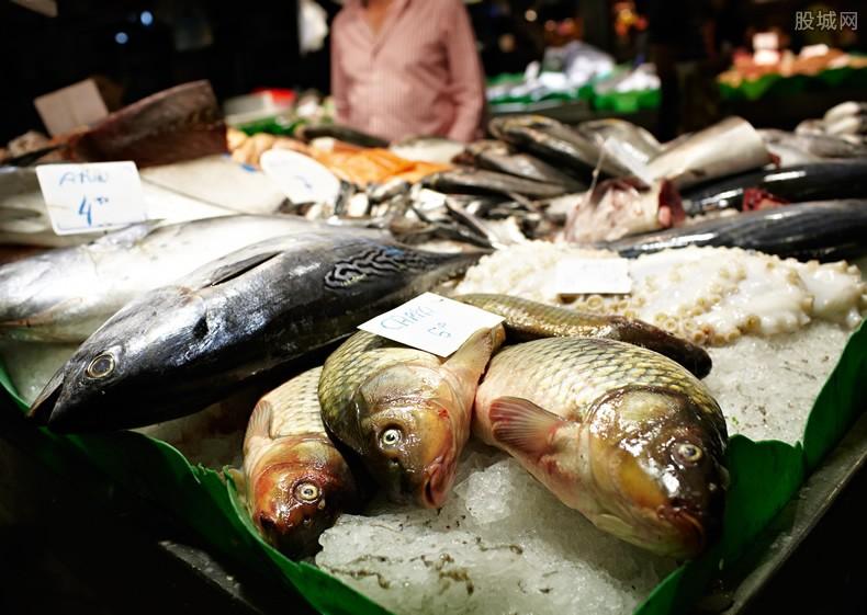 鱼价怎么样