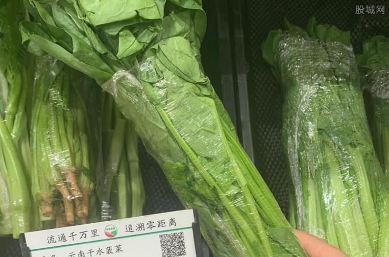 菠菜有危害吗