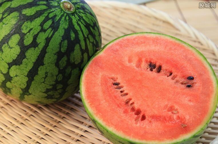 西瓜产业发展