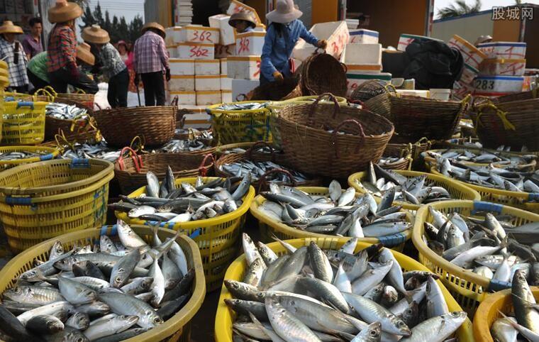 广东休渔期结束 部分价格较贵的海鲜价格将回落