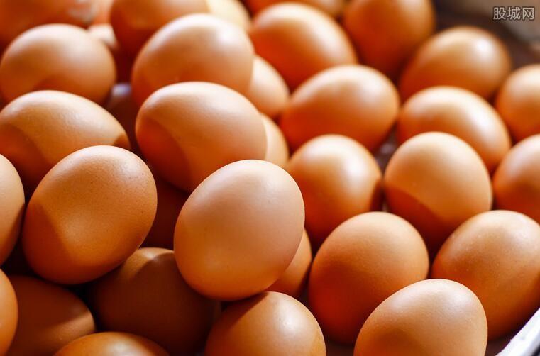 鸡蛋价格多少