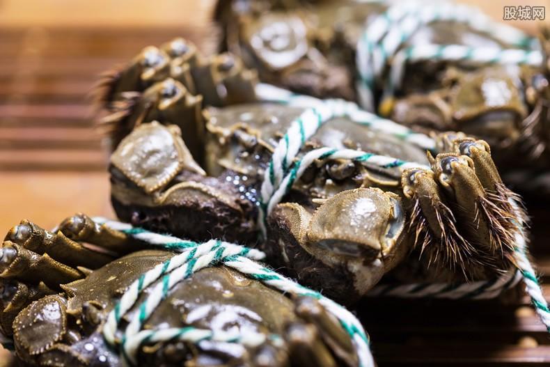 日本螃蟹500万 天价
