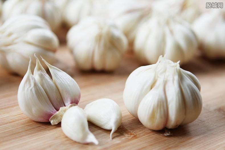 大蒜多少钱一斤