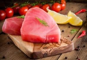 鱼王拍近2亿日元 日本金枪鱼创下第二高价纪录