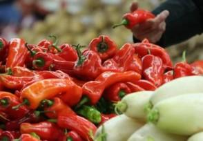 病毒可否蔬菜上存活 买菜应该要注意哪些问题?