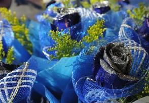 上百万支玫瑰被销毁 今年花卉价格整体下降