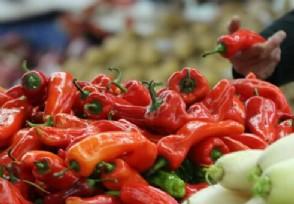 一公斤胡萝卜25元 武汉公司因哄抬菜价被罚300万