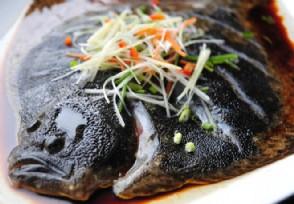 多宝鱼多少钱一斤 爱吃鱼的朋友进来看看!