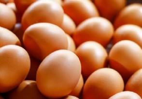 今日鸡蛋价格平稳 一斤鸡蛋需要多少钱?