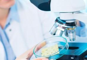 哈尔滨人可预约检测 核酸检测费用每人270元