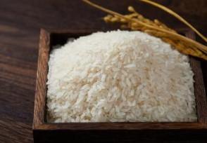 大米批发价多少钱一斤 4月份价格会涨吗?