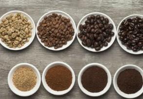 一斤咖啡豆价格 你知道什么牌子的最好喝吗?