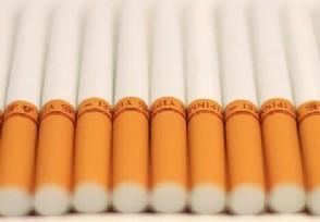 红塔山烟价格表 最贵的是多少钱一包