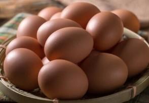 山东鸡蛋价格创年内新低 后期还会下降吗?