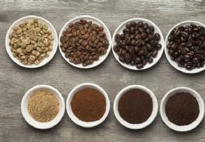 最贵的十款咖啡豆 喜欢喝咖啡的你都了解吗