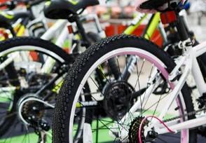 """欧洲疯抢中国自行车 上万元""""土豪""""车型也被抢购一空"""