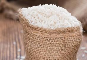 为什么超市大米不生虫 来了解一下原因