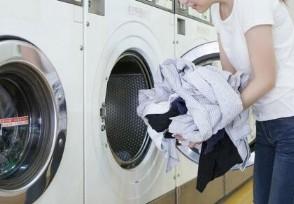 什么洗衣机好用又便宜 质量好的品牌排行