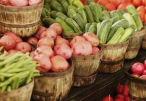 为何全国菜价大涨 2020下半年蔬菜行情