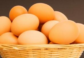 7月鸡蛋价格会上涨吗 现在鸡蛋多少钱一斤