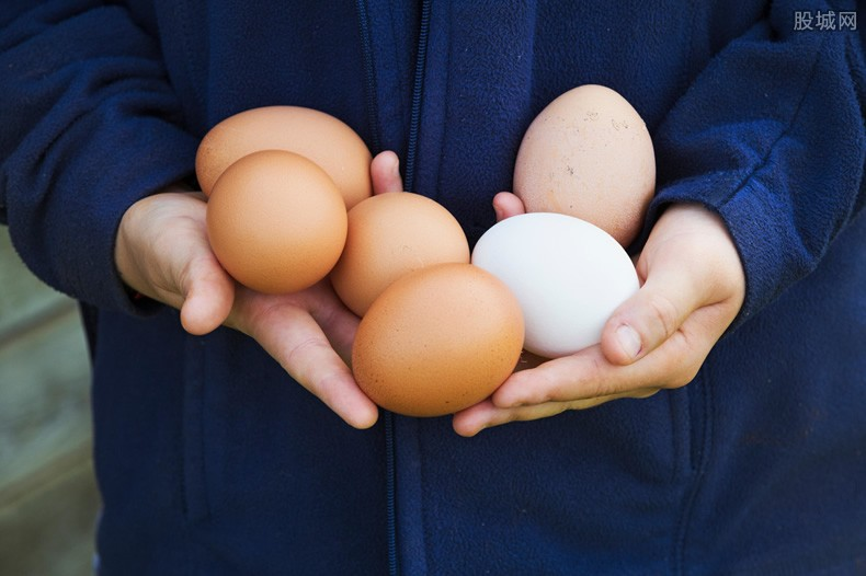 鸡蛋价格走势