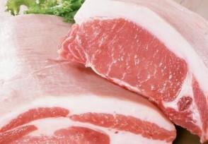 再过十天猪价会涨吗 目前猪肉一斤多少钱