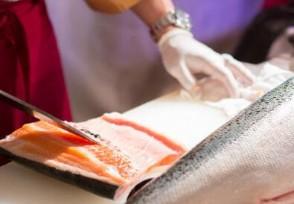 今日三文鱼价格最新还可以放心的食用吗?
