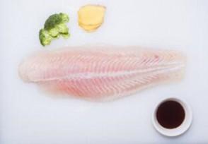 越南巴沙鱼多少钱一斤2020最新价格