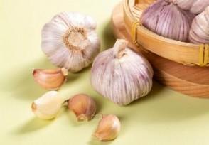 大蒜价格最新行情 现在市场上多少钱一斤?