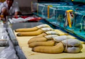 海鲜需求遇冷价格反升 不少日料店迎来了二次停业