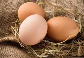 低蛋价或持续两三个月广州每斤下跌0.5到1元不等