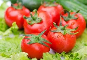 2020年取消农贸市场吗以后去哪里买菜?