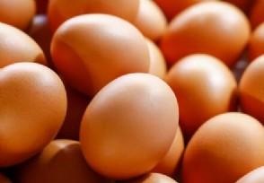 鸡蛋价格半年降近3成七月价格一斤多少钱?