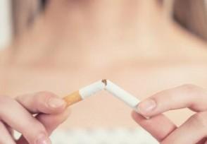 10元最好抽的10种烟这款香烟堪称经典