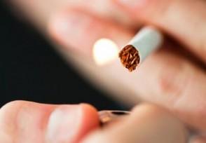 中华烟多少钱一条如何分辨真假香烟?