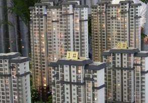 全国百城中近80%房价上涨想要买房更加难了